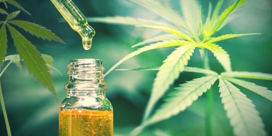 El CBD Es El Único Compuesto Terapéutico Del Cáñamo/cannabis