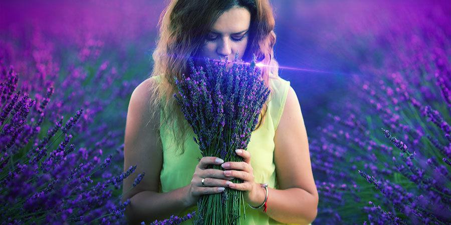 Cannabis & Linalool: Levantarte El Ánimo?