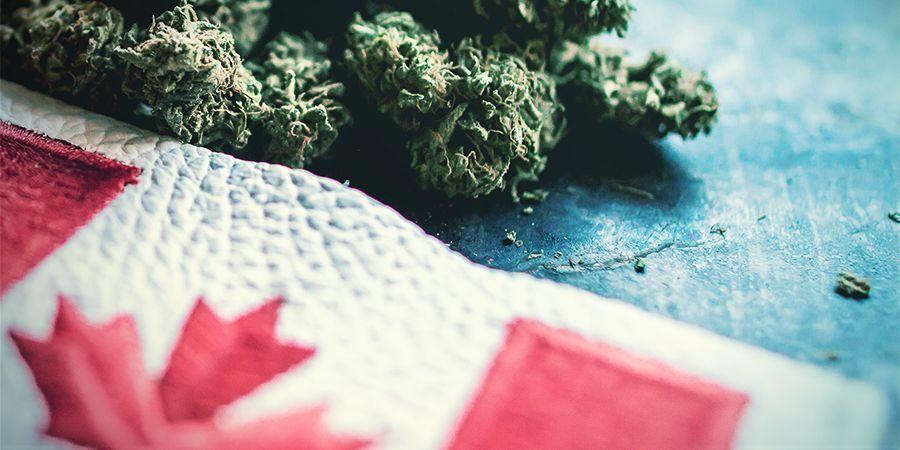 El Cannabis En Canadá: Un Largo Camino Por Recorrer