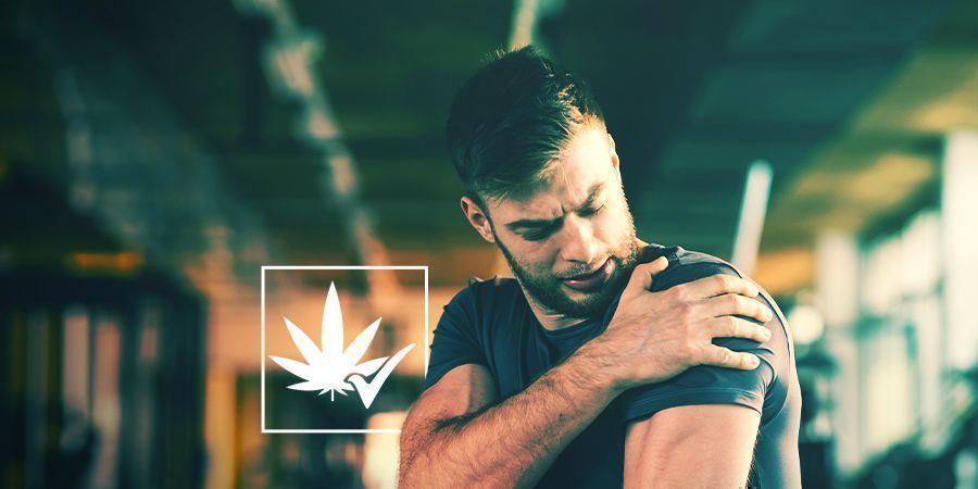 Cannabis: Una Medicina Efectiva Y Legítima