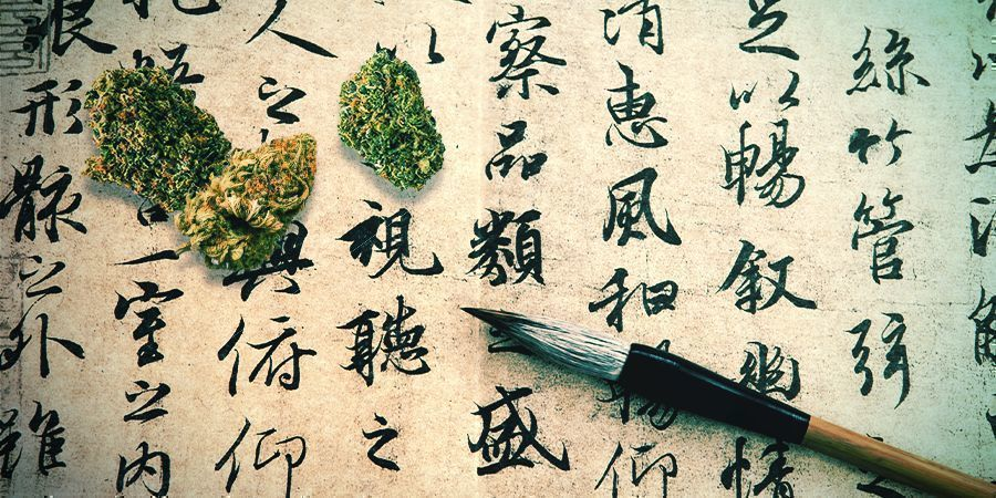 Cannabis: Una Medicina Olvidada