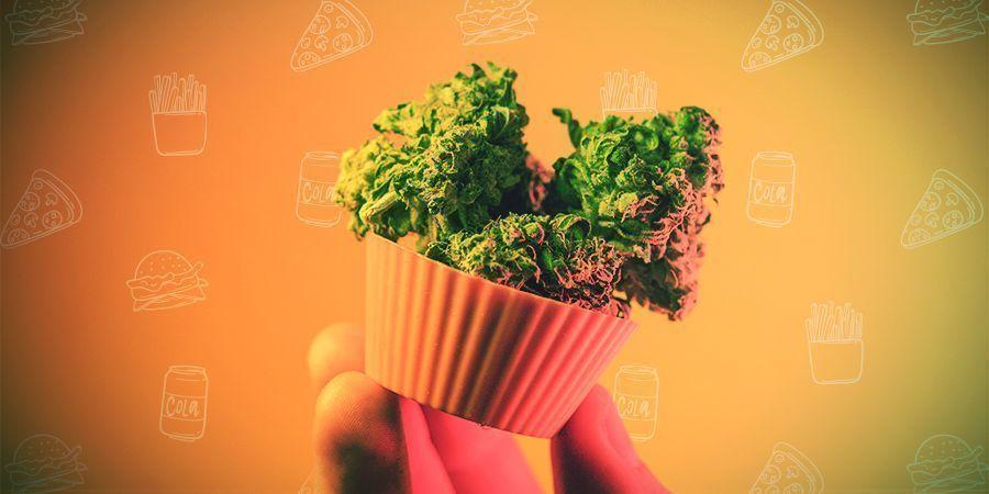¿Cómo Se Dosifican Los Comestibles De Cannabis?