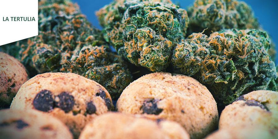 Coffeeshop La Tertulia Amsterdam - Comestibles De Cannabis