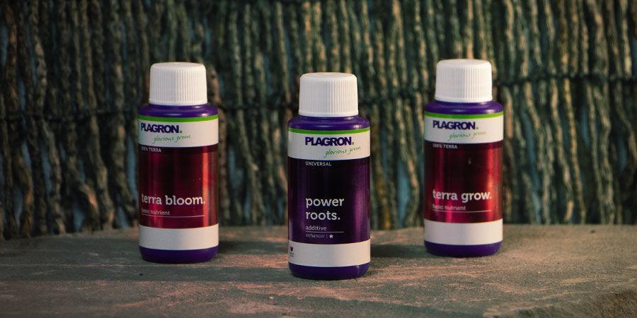 Productos Plagron En Zamnesia