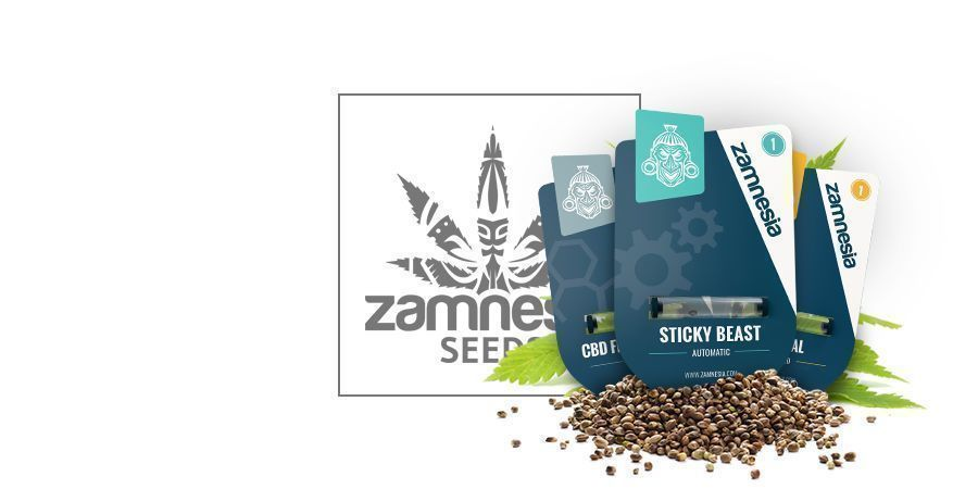 Zamnesia Seeds
