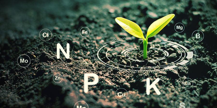 Controla Bien La Fertilización