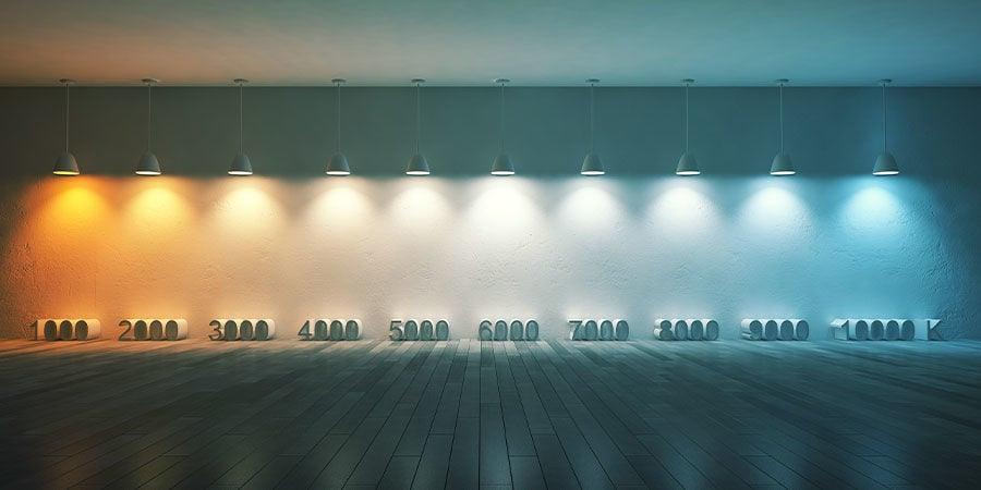 ¿Cuánta Luz Deberían Recibir Tus Setas Mágicas?