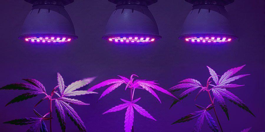 Encuentra la solución de iluminación más eficaz