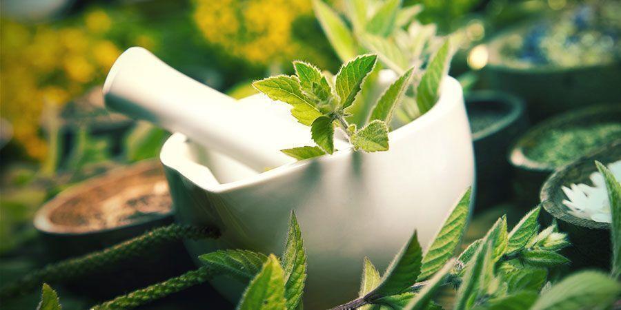 Jugo De Plantas Fermentadas (JPF) Abono Cannabis