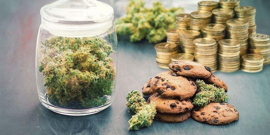 Gastar Mucho Dinero En Cannabis
