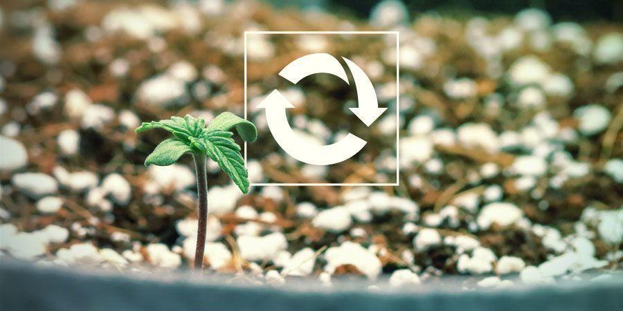 Son Reutilizables - Cultivo De Plantas De Marihuana