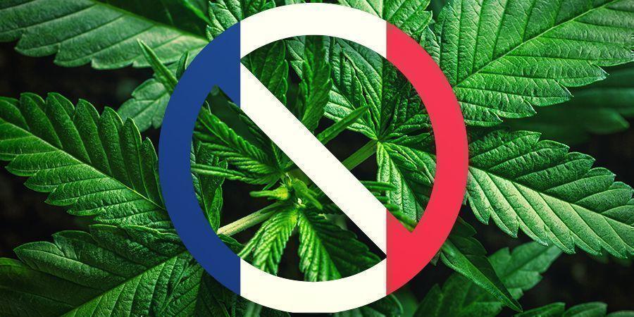 La Historia De Francia Con El Cannabis