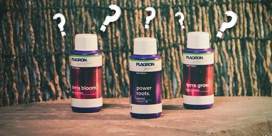¿Qué Tipo De Fertilizante Escoger?
