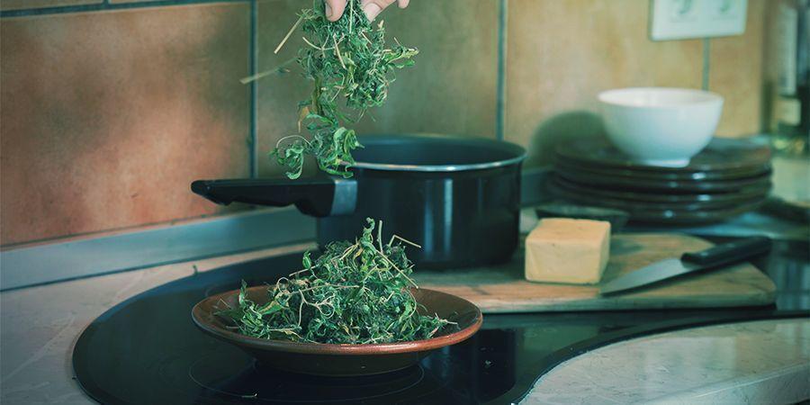 Comestibles Concentrados De Cannabis: Más Fácil De Usar