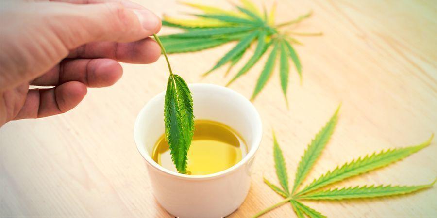 Comestibles Concentrados De Cannabis: Mezcla El Concentrado Con La Grasa Que Prefieras