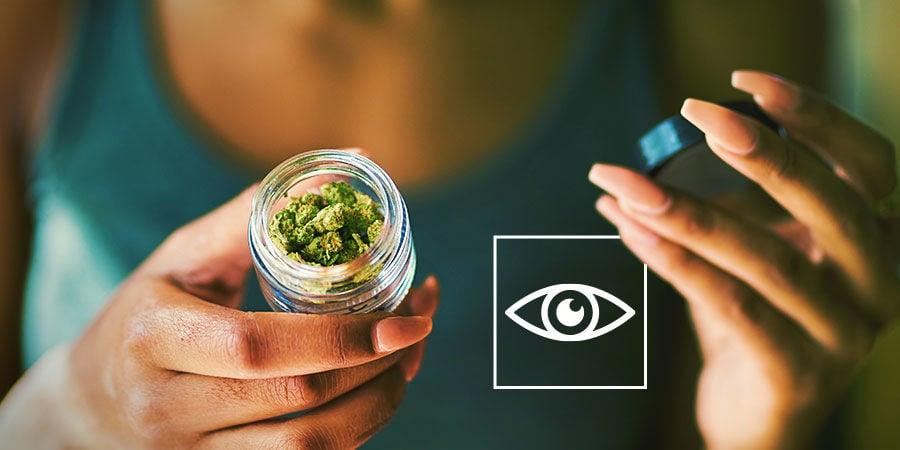 Detectar Los Contaminantes De La Marihuana: Inspecciona Tu Marihuana A Nivel Visual