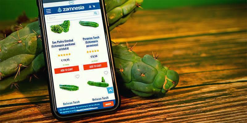 Dónde Comprar Echinopsis Zamnesiana