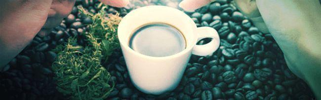Actividades Para Hacer Cuando Estás Colocado: Tómate Un Café