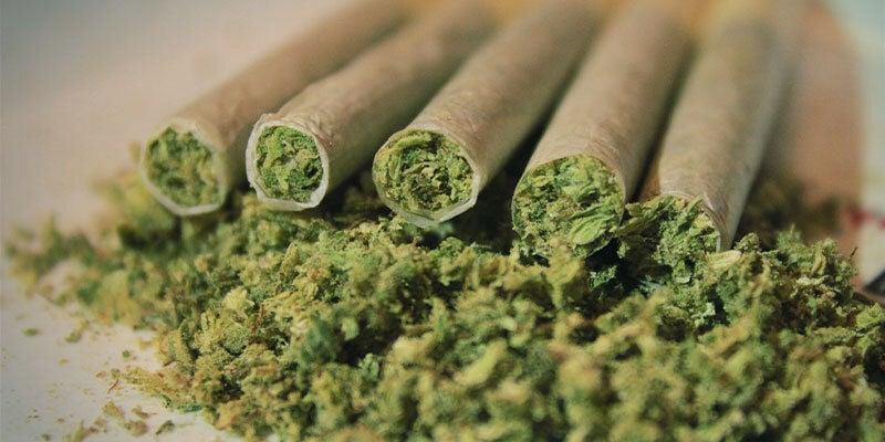 ¿Qué Ocurre Cuando Fumas O Ingieres Demasiada Marihuana?