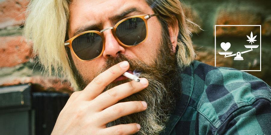 Todo Con Moderación, Incluida La Marihuana