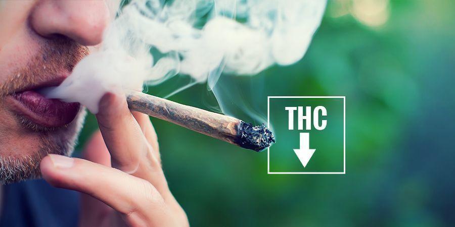 ¿SE PUEDE PREVENIR EL ENROJECIMIENTO DE OJOS? cannabis