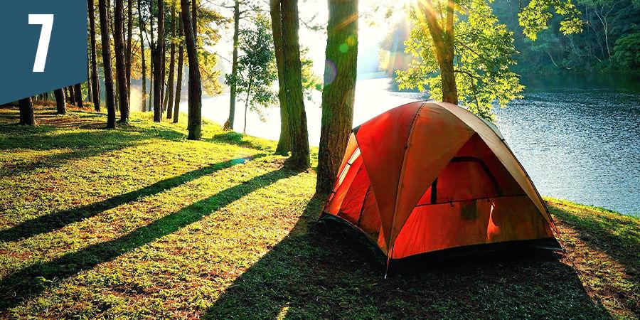 Acampa en el bosque