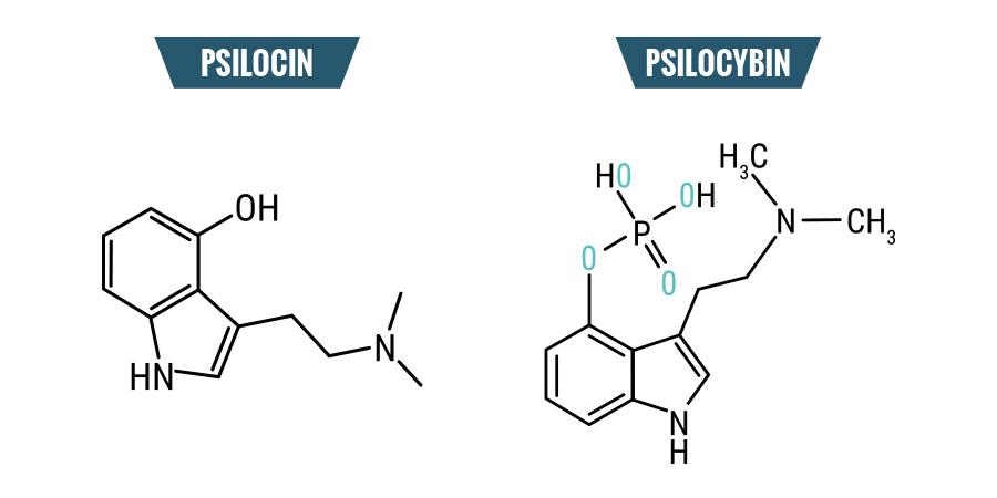 Estructura química de Setas Mágicas