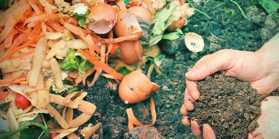 Ajustar El pH Del Suelo Cuando Cultivas De Forma Ecológica