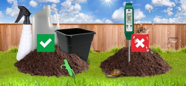 Cultivo En Patios O Jardines: Ventajas E Inconvenientes