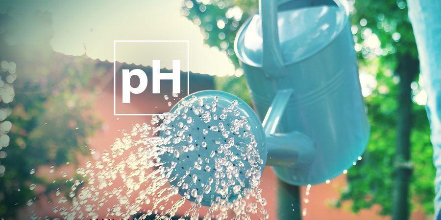 Problemas De pH