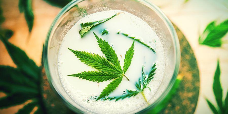 Otros Ingredientes Naturales (Leche, Pimienta De Cayena, Canela) - esprays foliares para las plantas de cannabis