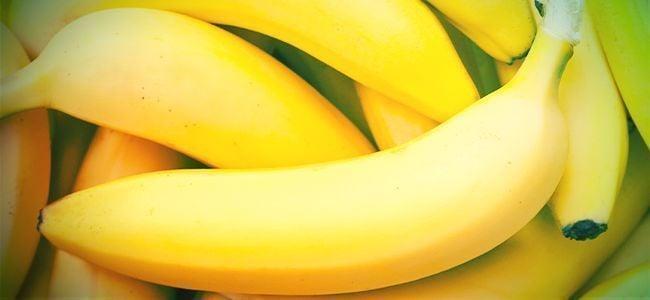 Subidones Legales Más Extraños: Bananadina