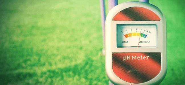 Hierba Mejor: Entienda El pH