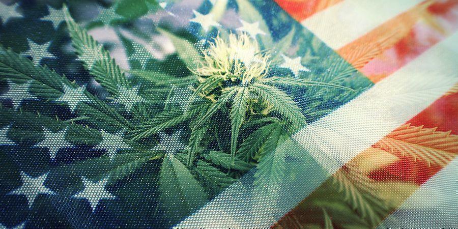 LA GUERRA CONTRA LAS DROGAS: ¿UN FRACASO ABSOLUTO?