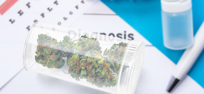 Acceso Al Cannabis Medicinal