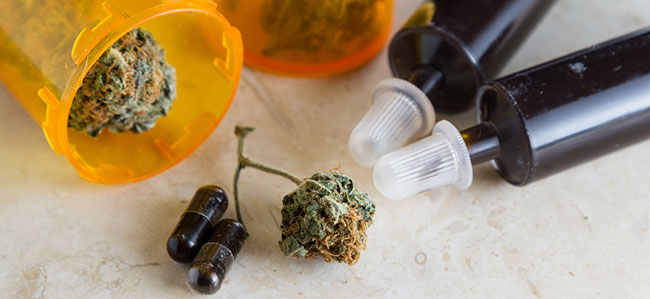 CBD aceite y cannabis