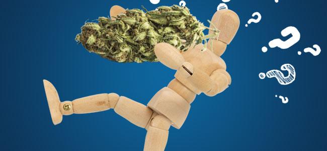 Cómo Puede Ayudar El Cannabis