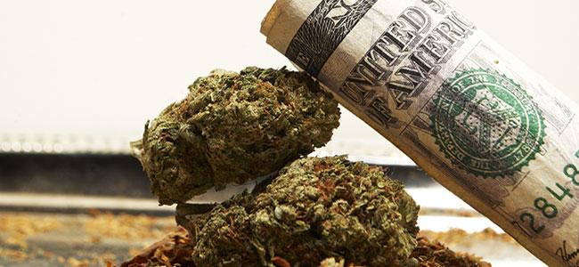 Cannabis Dinero