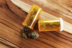 Cannabis medicinalis