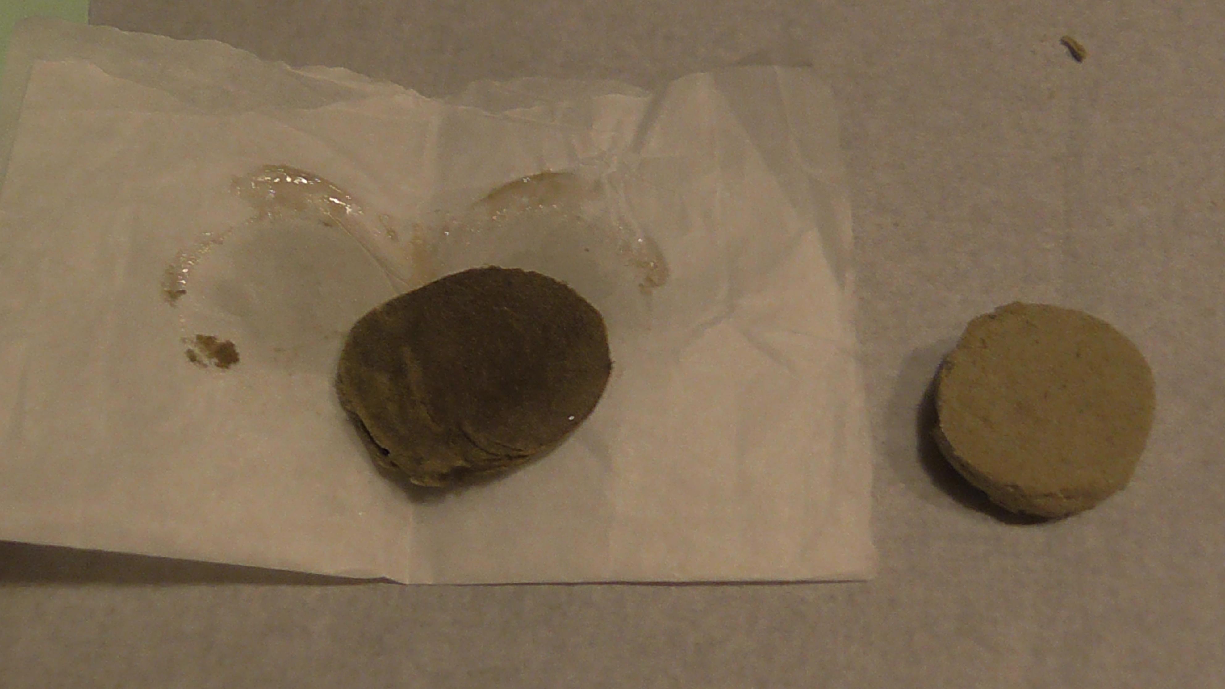 Moneda de polen y rosin