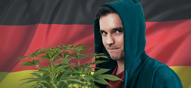 Cultivador Cannabis Alemana