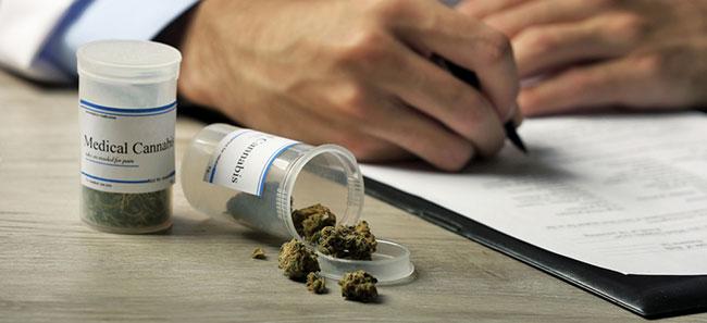 Cannabis Terapéutica