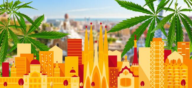 Barcelona Club De Cannabis