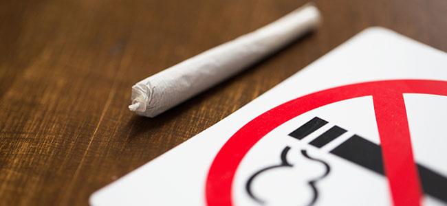 Efecto del tabaco cannabis