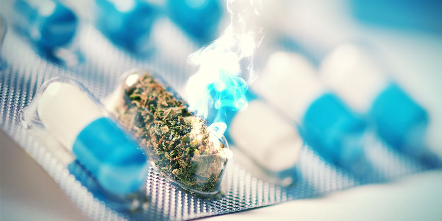 ¿Es Posible Que La Marihuana Sea El Analgésico Del Futuro?