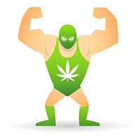 Cannabis demasiado potente