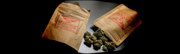 Cannabis envasado y contaminado