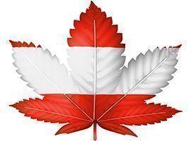 Cannabis Austria