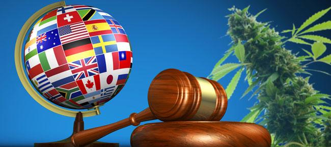 Legalización mundial del cannabis