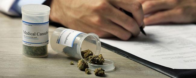 Receta Médica de cannabis